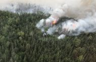 Four Large Forest Fires Declared